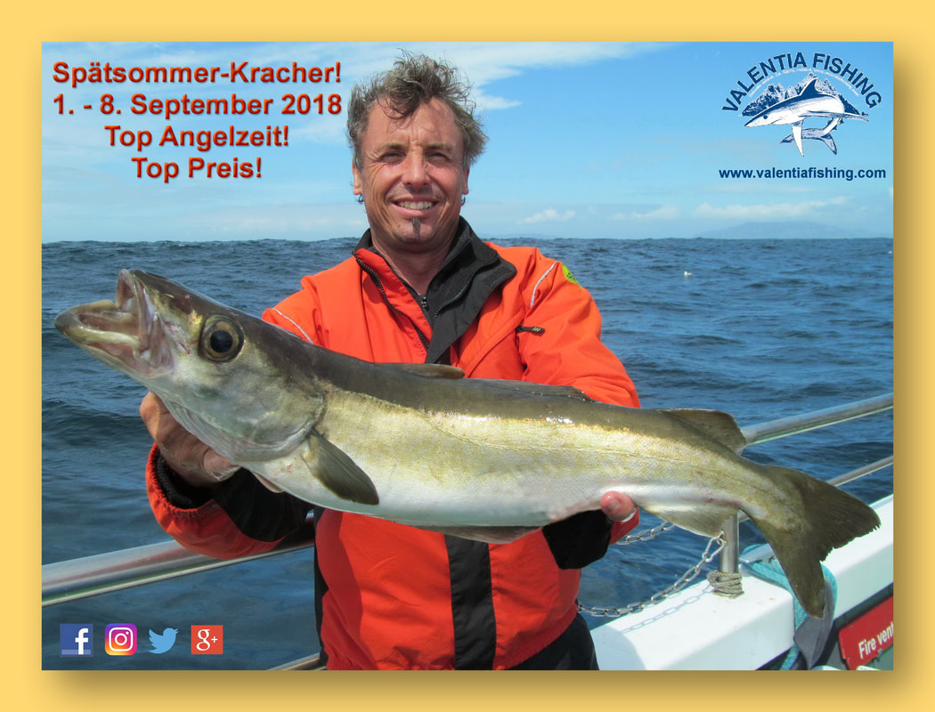 Spätsommer-Kracher! Spezial-Angebot Valentia Fishing im September 2018