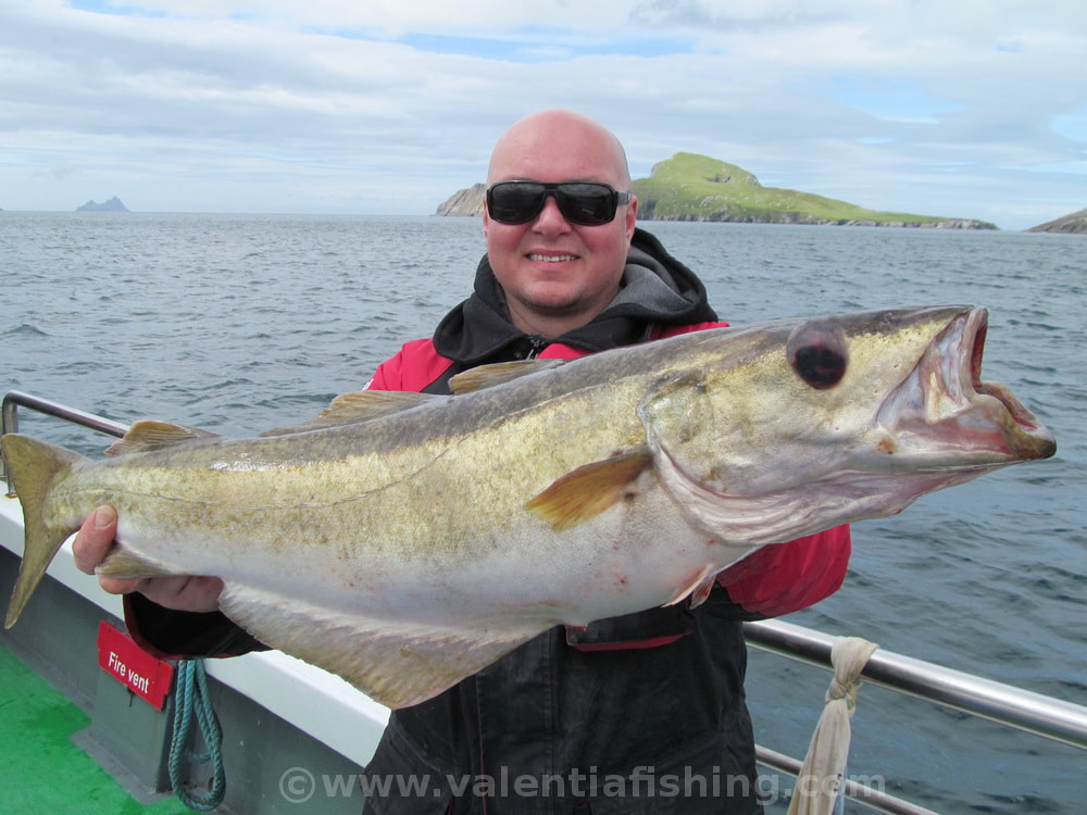 Valentia Fishing - Happy angler Dubi with a specimen pollack